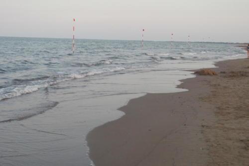 Moře Rosolina Mare